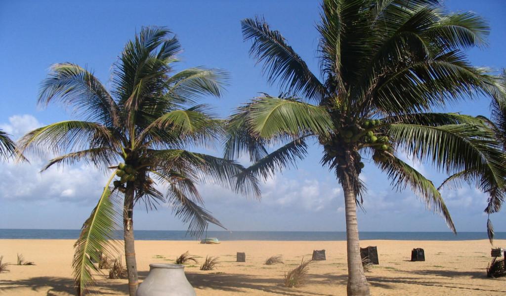 beach_1366x800